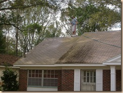 Tampa Roof Cleaning 003