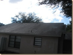 Tile-Roof-Cleaning-33601-Tampa-FL 11-17-2009 3-55-54 AM