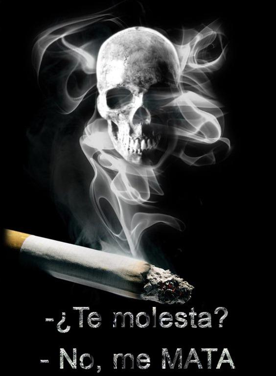 [SMOKING_KILLS_by_photografever[5].jpg]
