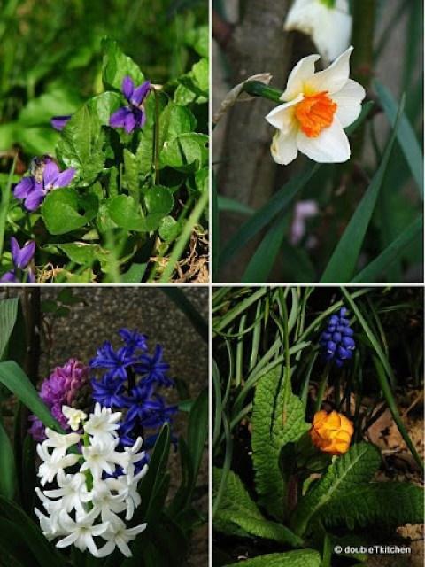 my secret garden 2-1