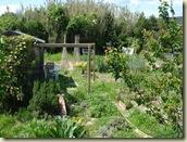 garden may_1_1_1