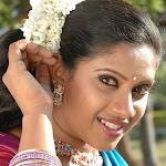 Mallu actress picturess with transparent saree
