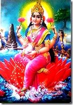 Lakshmi Devi - The Goddess of Wealth