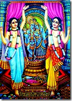 Nimai Nitai worshiping Radha Krishna