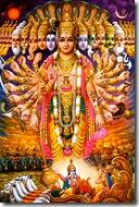Krishna's universal form
