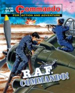 commando4232.jpg