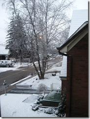 snowyday 003