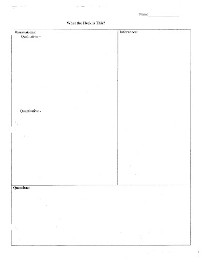 Worksheet On Inference Statements