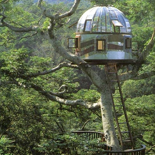 Peter Nelson S Treehouses Amusing Planet