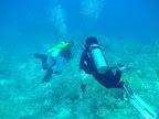 Mar Rojo, 23-30 mayo 2009