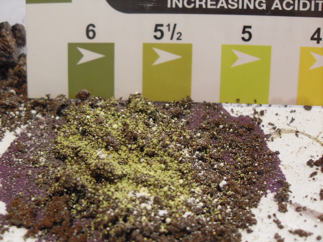 pH of Soil from Coffee Grounds (3/6)
