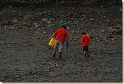 hunting for clams