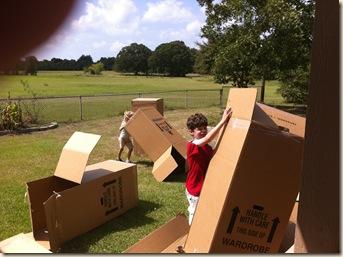 box fun while moving