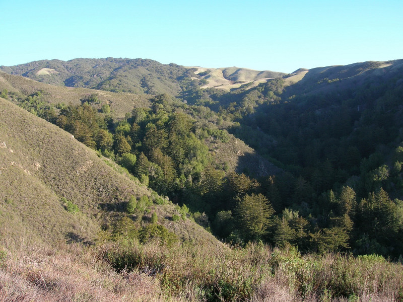 Descending into Soberanes Canyon
