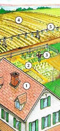 1. farmhouse 2. (vegetable) garden 3. scarecrow 4. crop 5. irrigation system