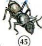 45. نملة