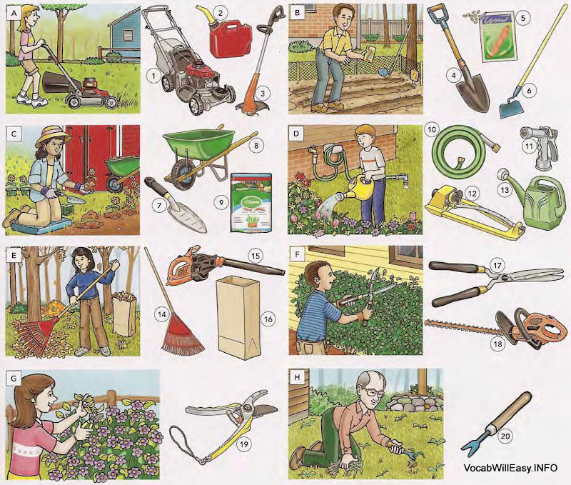 Gardening tools and home supplies online dictionary for kids for Garden accessories online