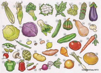 VEGETABLES Vegetables food