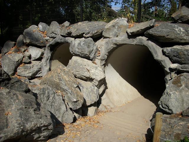 """Tunel prowadzący do podziemnego """"oderwatorium"""" wilków"""
