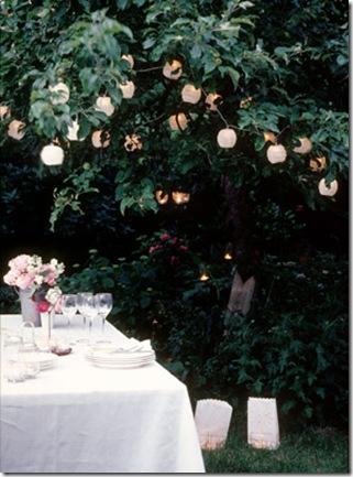aàrvore colorida foto de Sandra Lane