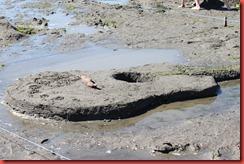 Sandcastler 372