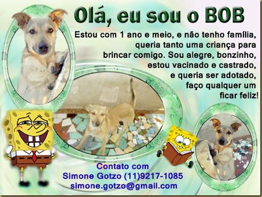 bob_simone