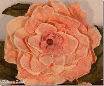 flower pot flower closeup
