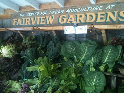 Fairview Farms