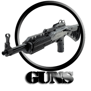 GUNS:Shotgun