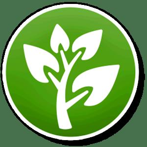 Biologi - Jaringan Tumbuhan