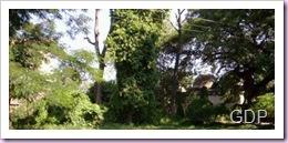 Chhapra Green