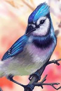 How to Draw Bird Animal screenshot 0