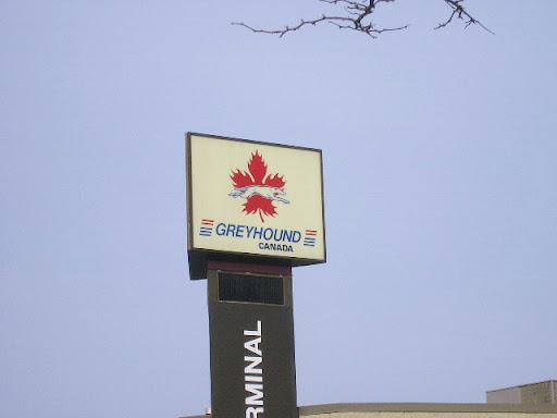 Signs of Guelph