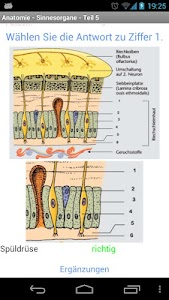 Anatomy - Sensory Organs 2 screenshot 3