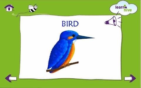 Learn Basic Colors screenshot 0