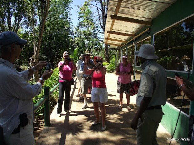 guests enjoying the snake experience at the PheZulu Safari Park