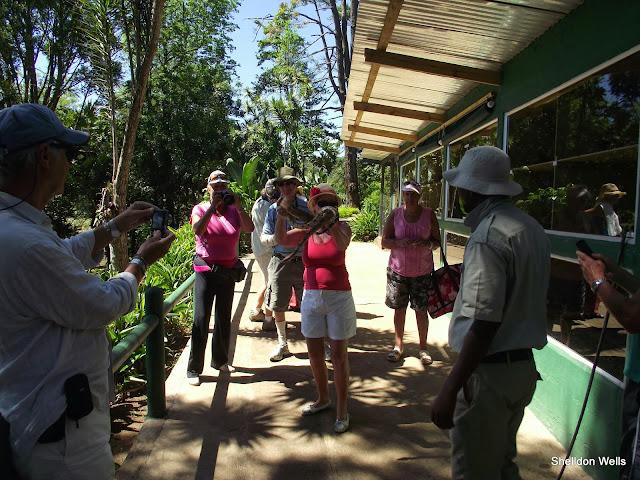guests enjoying the snake experience at the PheZulu Safari Park
