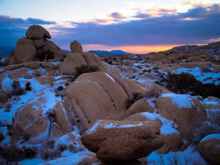 Snow covered rocks in Joshua Tree 2014