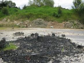 Residuos de quemas, Humedal El Salitre