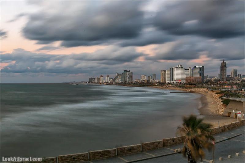 Чоткий Тель Авив