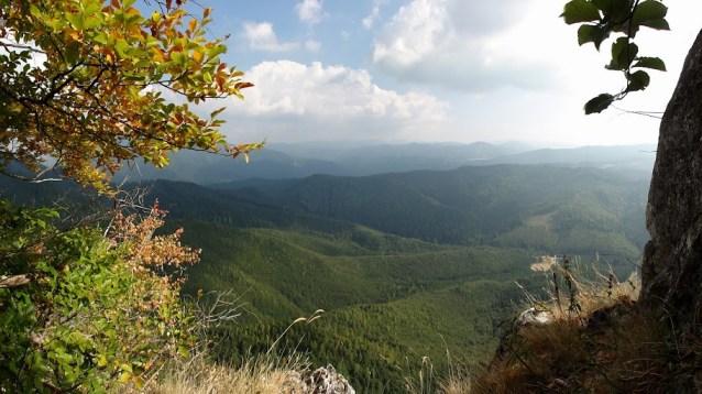 traseul Diedrul Corbilor, padurile din Postavarul