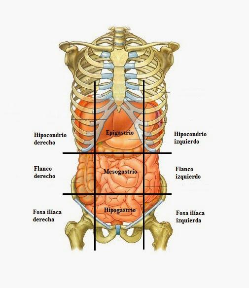 En El Período Neonatal Destaca La Encefalopatía Hipoxoisquémica Lactante Y Niño Pequeño Predominan Las Infecciones Del Snc