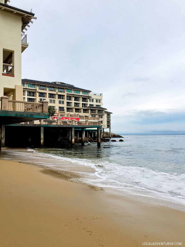 Monterey Bay Things to Do: Adventures by the Sea.