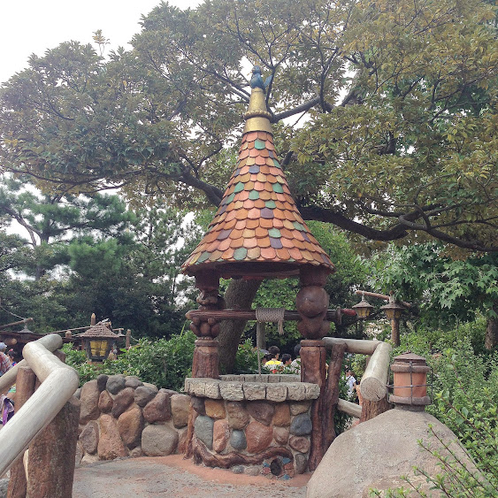 tokyo disneyland wishing well