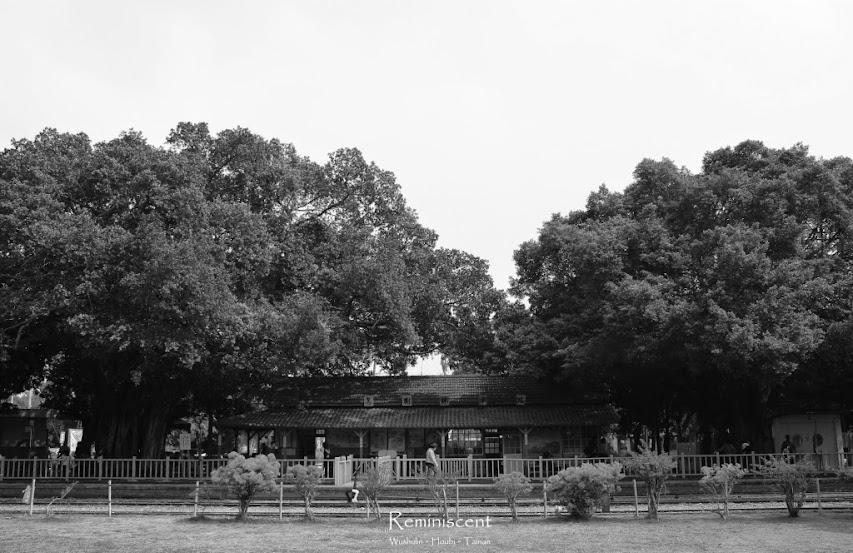 台南後壁,烏樹林糖廠