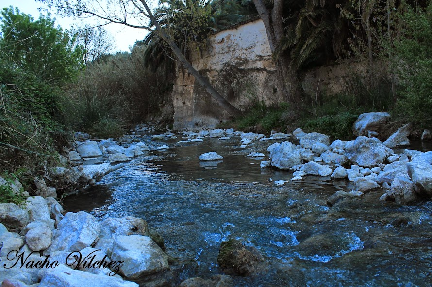 Embalse y río Colomera 06.04.14 (2/6)