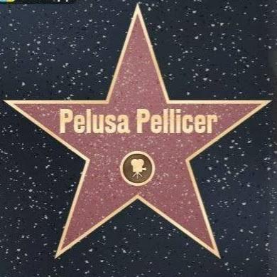 Foto del perfil de Pelusa Pellicer