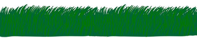 [Imagem: green-grass.png]