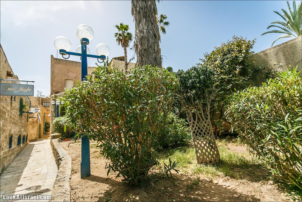 Тель Авив Яффо
