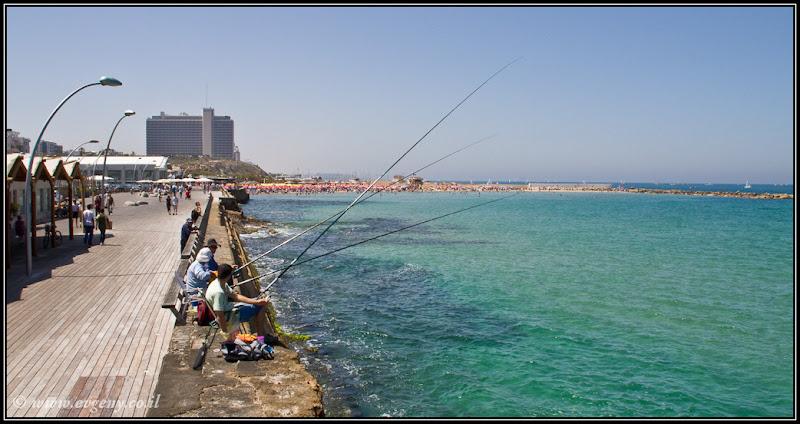 Фото: Портовые рыбаки